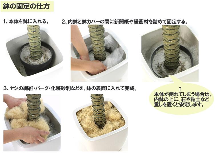 鉢の入れ替え方1