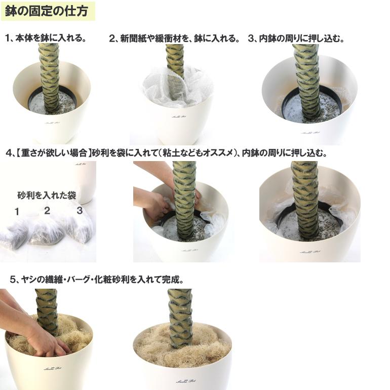 鉢の入れ替え方2