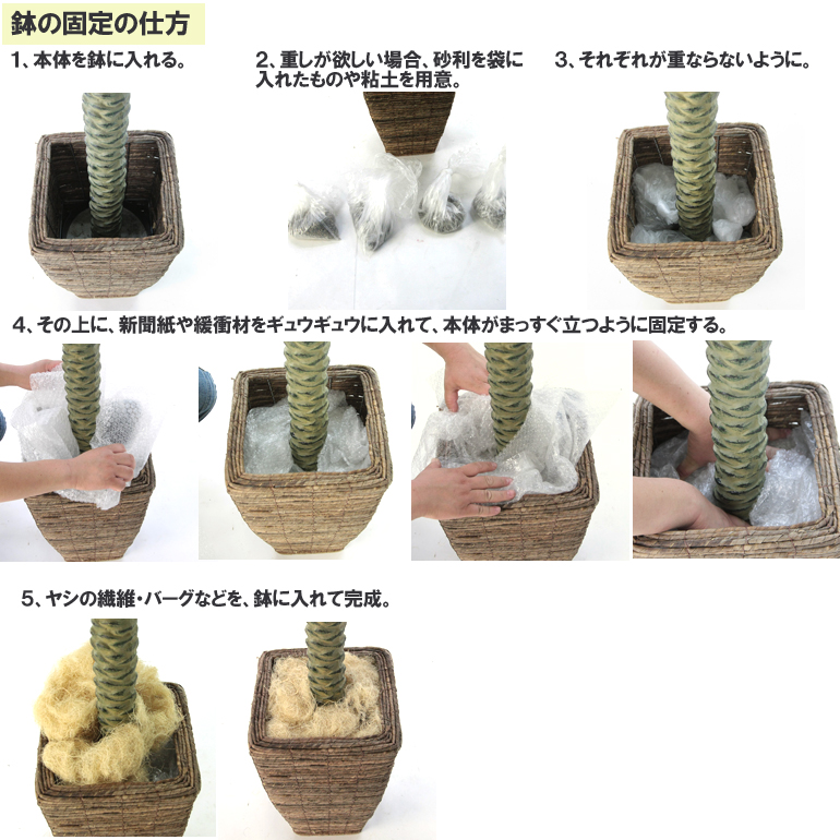 鉢の入れ替え方3