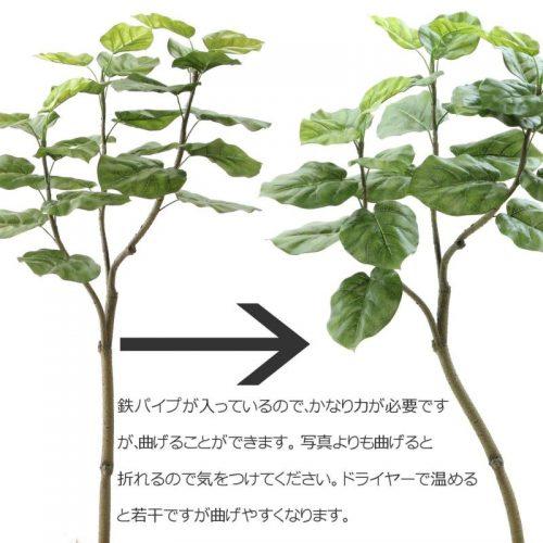 人工観葉植物・フェイクグリーンの取扱
